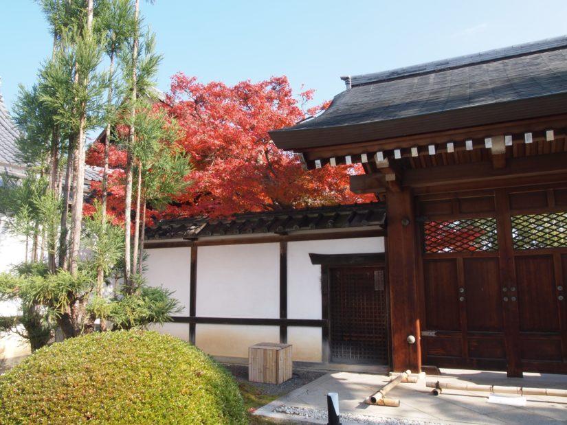 大覚寺の門